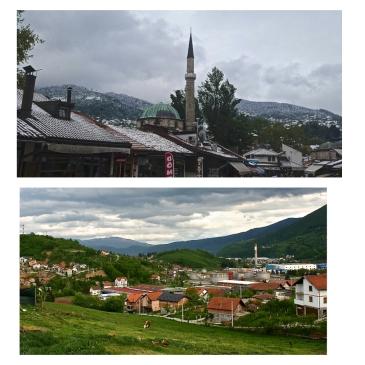 Bosniapicsti